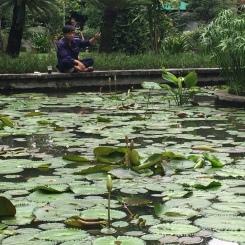 Parc d'Hô Chi Minh - Viêt Nam